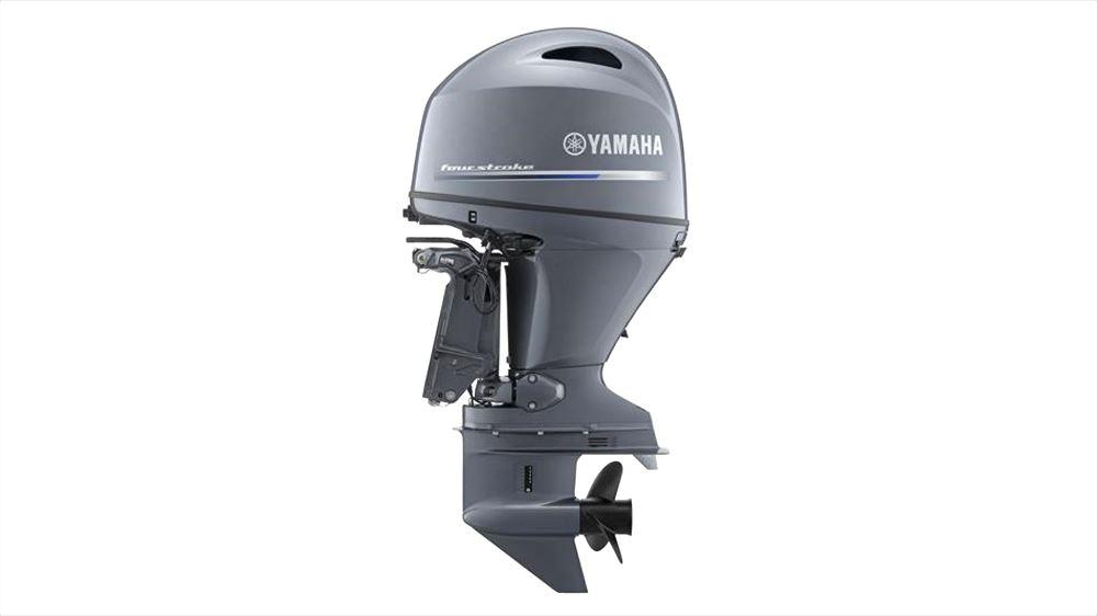 Yamaha F 100